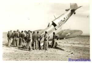 Org-Photo-US-31st-Fighter-Group-Spitfire-Fighter-Plane-Crash-Landed-in-Field