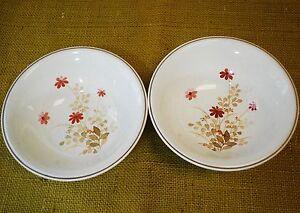 "Outlook by NORITAKE Versatone - Set of 2 Cereal Bowls 6 1/2"" - Brown Pink Floral"