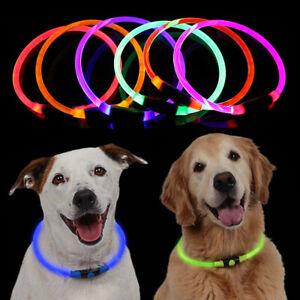 UK-USB-Rechargeable-Pet-Dog-Collar-LED-Flashing-Light-Up-Safety-Belt-Waterproof