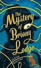 The Mystery of Briony Lodge by David Bagchi (Hardback, 2016)