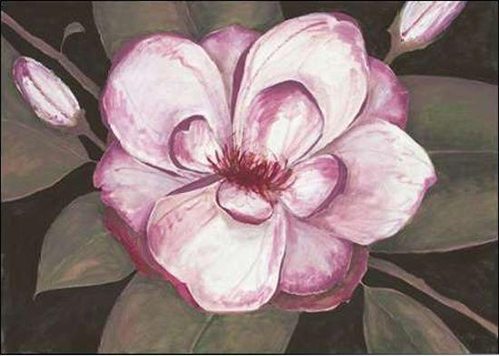 Fillippo ioco   serruria FLORIDA Magnolia IMMAGINE IMMAGINE IMMAGINE Telaio incastro TELA FIORI 0fddb9