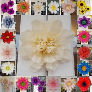 Details About Wedding Pompom Tissue Paper Flower 19cm Venue Decoration Baby Shower Centerpiece