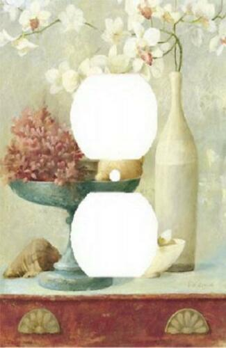 WHITE ORCHIDS FLOWERS /& SEASHELL CORAL BEACH LIGHT SWITCH PLATE COVER