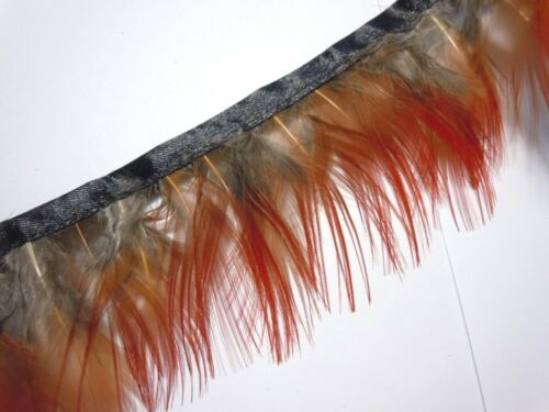F401 par pieds-Rouge Paon Alectoris Perdrix choukar Faisan hackle feather Fringe Trim