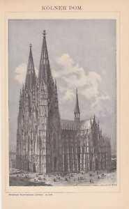 KÖLNER DOM Dom zu Köln Kathedrale Holzstich von 1898