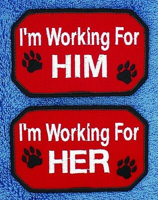 """Im Working For Him Her Service Dog Patch 2.5X4"""" Therapy Assistance Danny & LuAnn"""