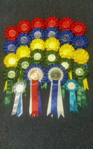 2 Tier Rosettes 6 x 1st4th Complete Show in a Box Total 28 Rosettes