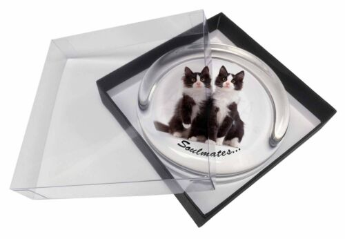 Soulmates' Black, White Kittens Glass Paperweight in Gift Box Christm, SOUL15PW