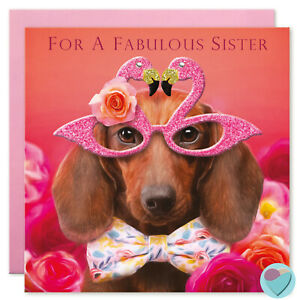 Sister Birthday Card Dachshund Flamingo Glasses To Or From Sausage Dog Lover Ebay