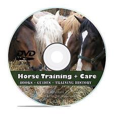 Vintage Horse Training Library, 175 Books, Race Horse Care, Make Harness DVD V44