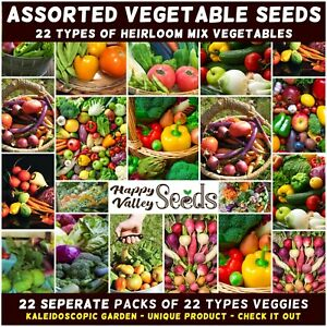 Vegetable 100 Seeds 5 in 1 Pack Chilli+Eggplant+Capsicum+Yard long beans+Pumpkin