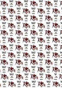 Bob Marley Personalised Birthday Wrapping Paper /& 2 Tags