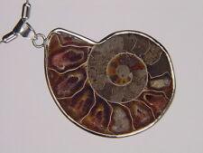 BUTW Silver Ammonite nautiloid fossil   47mm pendant necklace jewelry 6155K
