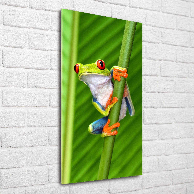 Wand-Bild Kunstdruck aus Acryl-Glas Hochformat 70x140 Laubfrosch