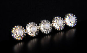 10PCS-16MM-WESTERN-TURQUOISE-FLOWER-SLIVER-TANDY-LEATHERCRAFT-CONCHOS-SCREW-BACK