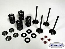 Stainless Steel Intake and Exhaust Valves with Spring Kit Suzuki RM Z250 04-06