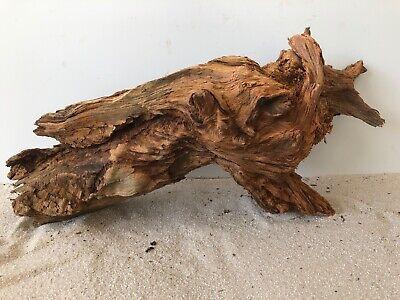 Fische & Aquarien Besorgt Premium-kienwurzel Aquariumwurzel ähnlich Mangrove Moorkien #868 39x20x21cm