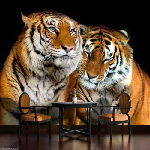 Vlies Fototapete Fototapeten  Tapeten Tiger Katze Tier Freund Foto 14N130VEXXL