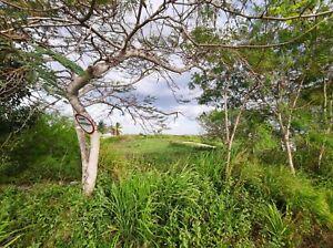Terreno en Venta 2 hectareas sobre carretera Merida Progreso en Yucatan
