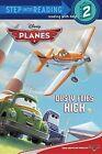 Dusty Flies High by Susan Amerikaner (Paperback / softback, 2013)