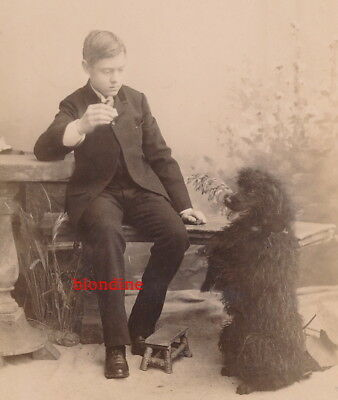 CAB: YOUNG BOY is playing with cute POODLE DOG; Germany, c. 1890