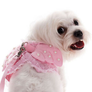 Pet-Safety-Walking-dog-Vest-Harness-Lead-Leash-Angel-Wings-Costume-Lace-Leashes