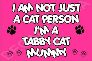 I-039-M-NOT-JUST-A-CAT-PERSON-I-039-M-A-TABBY-CAT-MUMMY-Laminated-Sign-Ideal-Gift