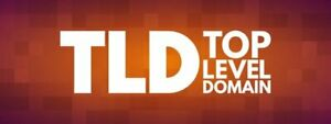 TLD -- assetsus.com -- TLD Domain only name