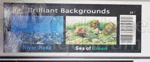 "SEAVIEW Sea of Green//Japanese Garden River Rock 2 Scene 24/"" Aquarium Background"