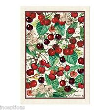 Superieur Michel Design Works Cotton Kitchen Tea Towel Black Cherry   NEW