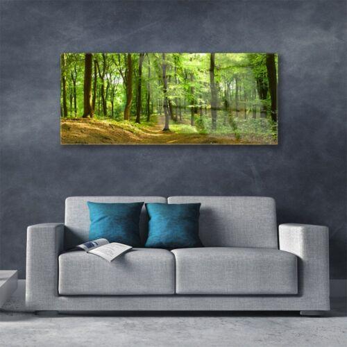 Acrylglasbilder Wandbilder Druck 125x50 Wald Natur