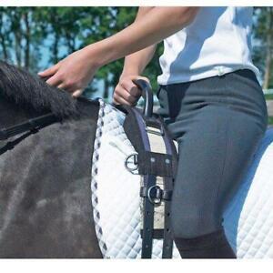 BUSSE-Longiergurt-mit-Griff-MiniShetty-Shetty-longieren-voltigieren-reiten