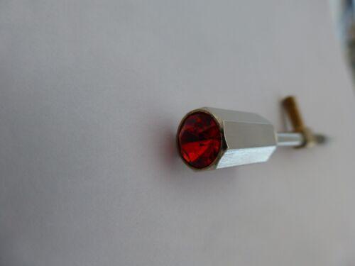 Ungewöhnliches Geigenbogen Schraube Chrom Halterung mit Roter Rubin Typ Ende