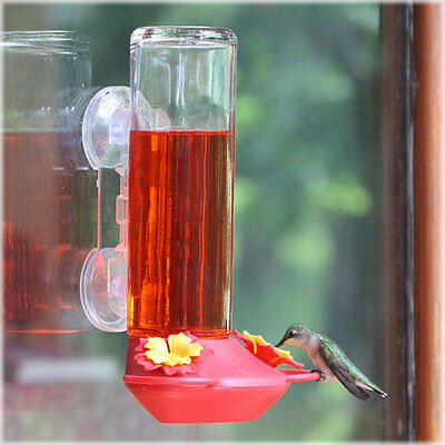 Perky Pet 455-3 Garden Jewels Window Mounted GLASS Hummingbird Feeder 14oz