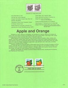 #0120 34c Apples and Oranges Stamps #3491 & #3492 Souvenir Page