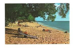 BARBADOS-BWI-Paradise-Beach-Wayfarer-Bookstore-Postcard