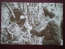 POSTCARD ROYALTY THE PRINCESS ROYAL AT MARWELL ZOO 1992