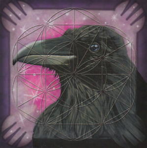 Raven-Totem-Animal-Flower-of-Life-Grid-Card-Laminated-8x8in-Transformation-Magic