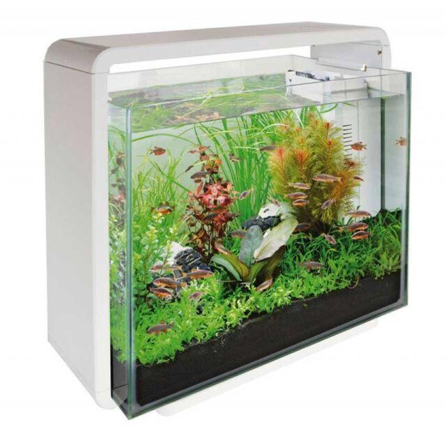 c57cfec9e26 SuperFish Home 40 Glass Aquarium Fish Tank White 40L with Filter   LED Light
