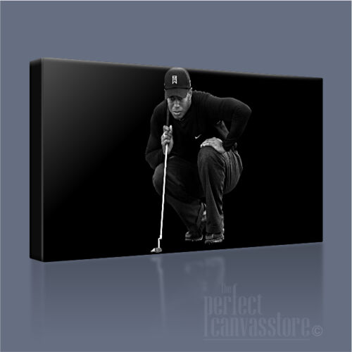 Tiger Woods una leyenda Reborn magníficamente icónica lona impresión de arte Art Williams