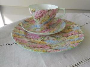 Shelley-Rock-Garden-Trio-Cup-Saucer-Plate-England-MINT-SHIPS-FREE