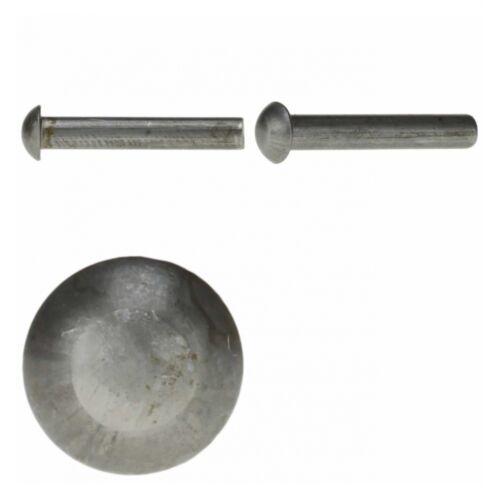 Stahl blank 200x DIN 660 Halbrundniete 2.5x6