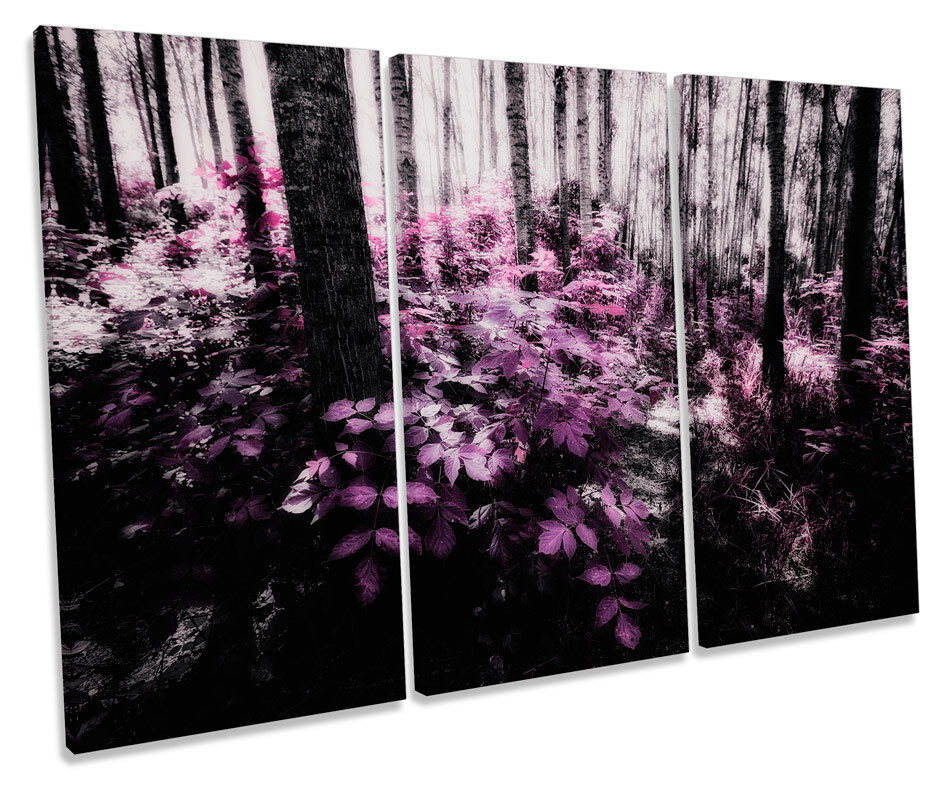 Landscape Scene Floral Forest TREBLE CANVAS WALL ART Box Framed Picture