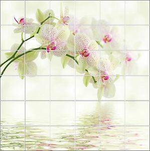 sticker carrelage mural faience d co cuisine ou salle de bain orchidee ref1923 ebay