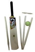 Ca Kids Garden Outdoor Essential Starter Cricket Set Bat Ball Stumps Size 5