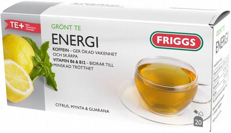 friggs energi te