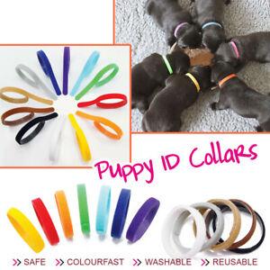 12-Farbe-Welpen-Welpenhalsband-ID-Halsbaender-Klettband-fuer-Hunde-Katzen-Haustier