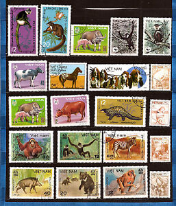 VIETNAM-Animales-nacionales-salvajes-perros-monos-los-jabalies-osos-diversos