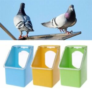 Bird-Parrot-Food-Water-Bowl-Pigeons-Pet-Cage-Cup-Feeder-Feeding-Supplies