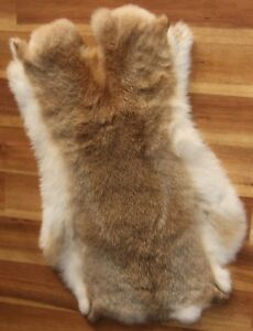2x-WILD-WOODLAND-Rabbit-Skin-Fur-Pelt-for-animal-training-crafts-toys-LARP